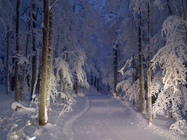 Night-ski.jpg