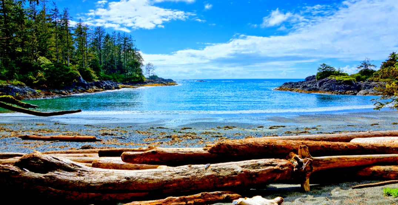 Pacific Rim National Park (JeniFoto/Shutterstock)
