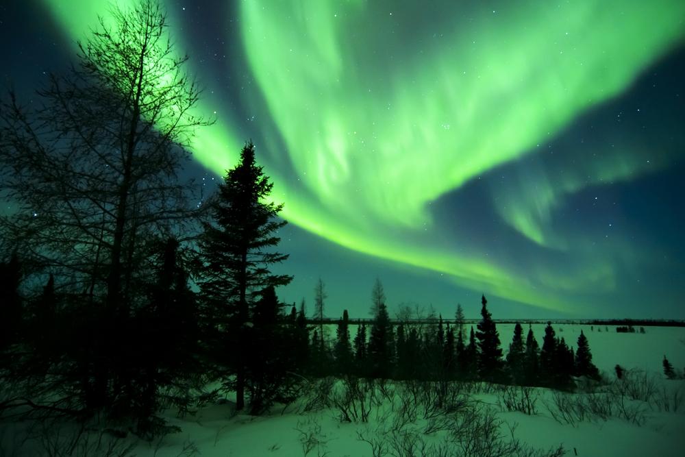 Wapusk National Park (AndreAnita/Shutterstock)